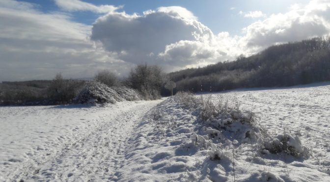 VTT : sortie hivernale…
